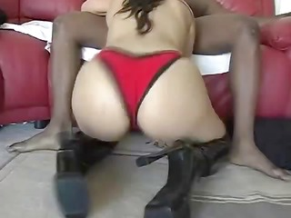 careena collins fucked by bbc